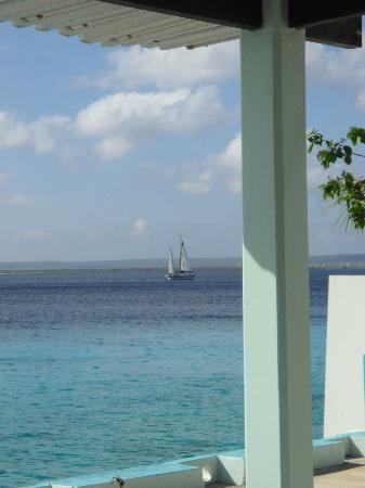 Bonaire Happy Holiday Homes: Boat spotted