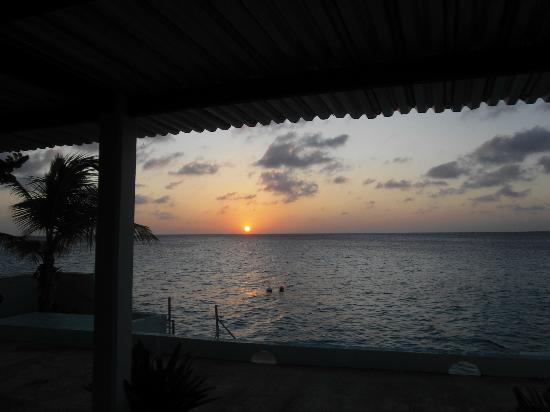 Bonaire Happy Holiday Homes: Backyard view