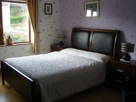 Rossroe Lodge B&B: Room 1 (double room)
