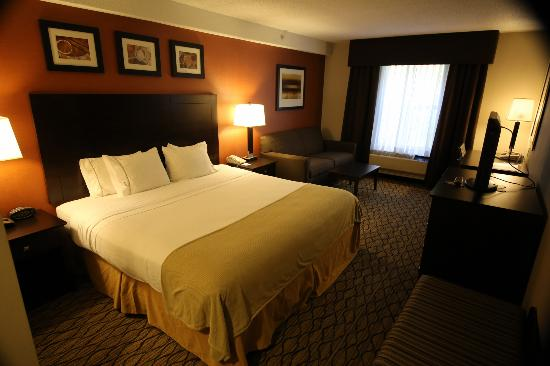 Holiday Inn Express & Suites: Guest Room