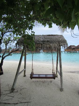 Veligandu Island Resort & Spa : Beautiful swing