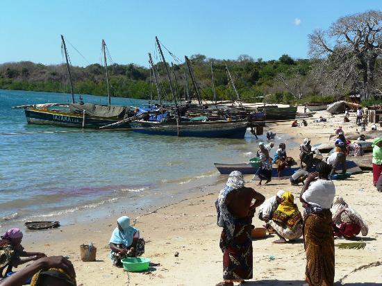 Mtwara Region, Tansania: рыбный рынок