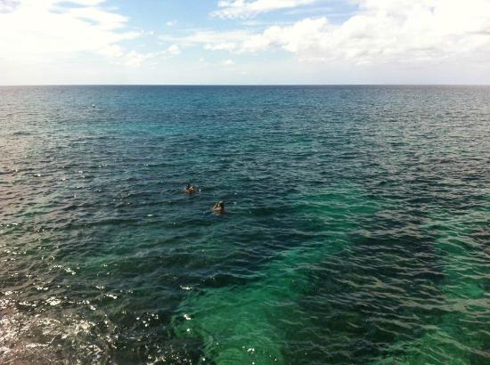 The SPA Retreat Boutique Hotel: Snorkeling