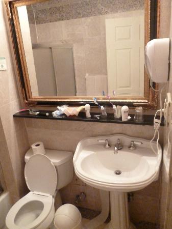Da Vinci Hotel: Baño completo.