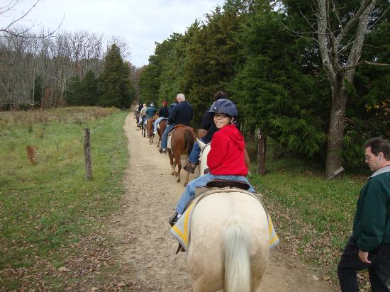 Confederate Trails of Gettysburg : Touring the battlefield