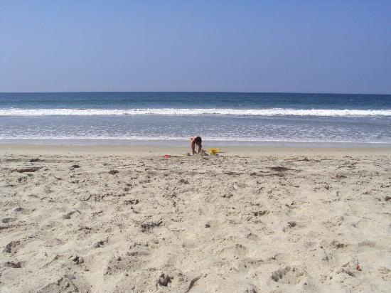 คาร์ลสแบดอินน์ บีช รีสอร์ท: The beach