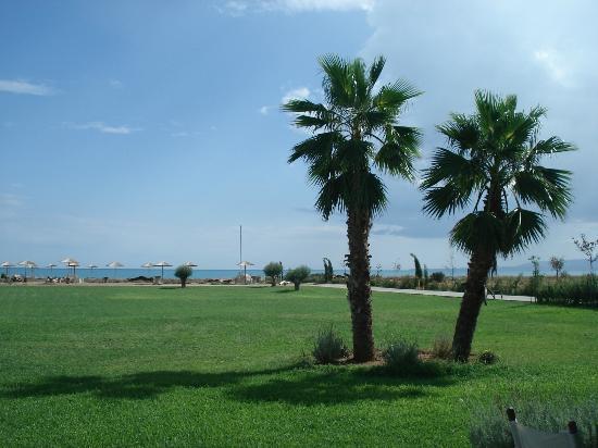 Neilson Buca Beachclub: Κήπος