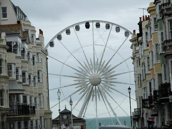 The Twenty One: The Brighton Eye