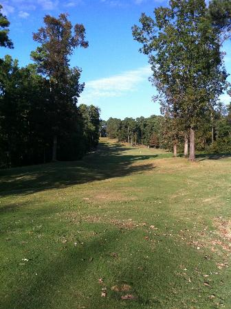 Cypress Bend Golf Resort: Lots of dog legs...