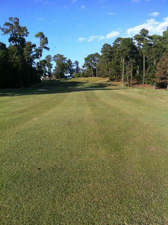 Cypress Bend Golf Resort: Well kept fairways - but beware! factor the elevation changes when you grab a club!