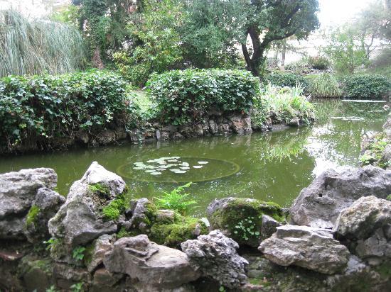Vasca dei pesci rossi e delle ninfee foto di orto for Vasca pesci giardino