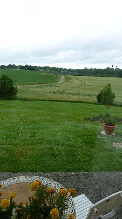 Pre de l'Aubier B&B: Countryside view