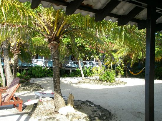 Reef House Resort: Garden Area