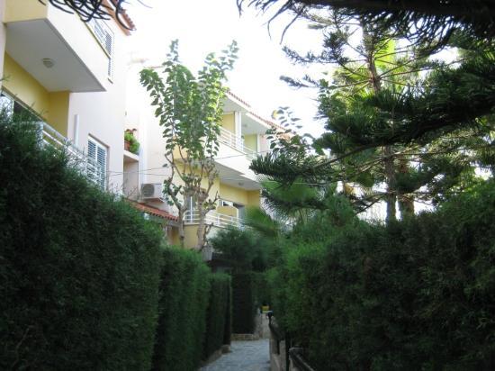 أبولونيا هوليداي أبارتمنتس: Garden 