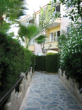 Apollonia Holiday Apartments: Garden