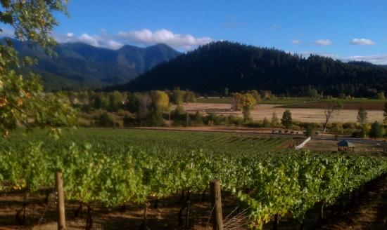 Selma, Орегон: view from the top at Deer Creek Vineyards
