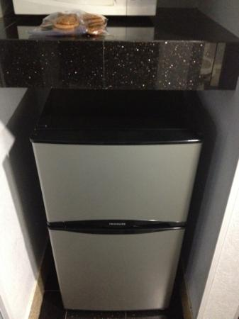 Bonita Springs Hotel & Suites: fridge and freezer