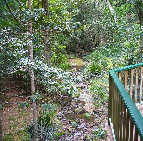 "Narrows Escape Rainforest Retreat: View from ""Kookaburra"" verandah"