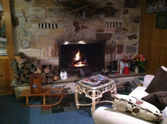 Mountain Meadows Bed & Breakfast: fireplace in the common room