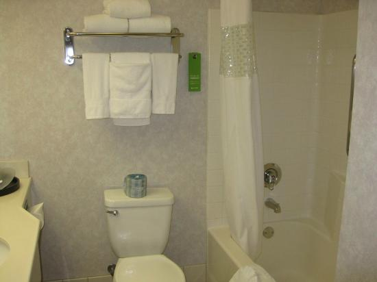 Hampton Inn Bakersfield - Central: Bath tub