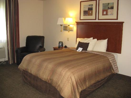 Candlewood Suites Springfield : Springfield Candlewood Queen Suite
