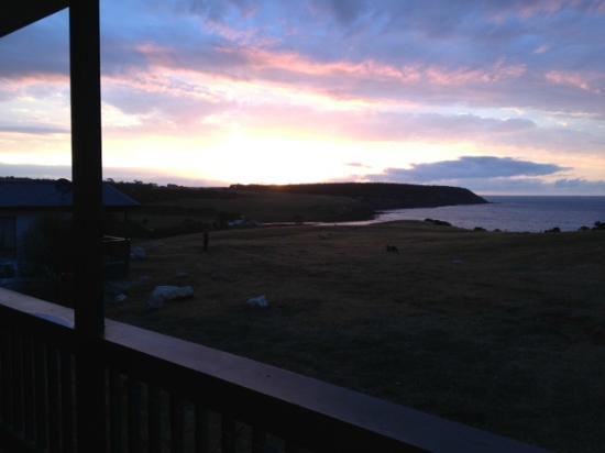 وايفز آند وايلدلايف: View from the balcony at sunset 