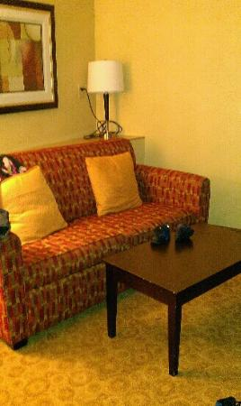 Comfort Suites Gulfport: mini living room