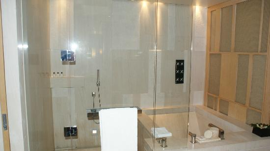 Park Hyatt Beijing: shower/bath