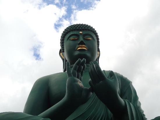 Toganji Temple : 大仏様