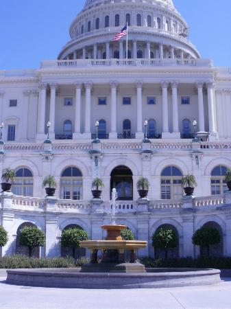 Capitol Hill : Details on Capitolium