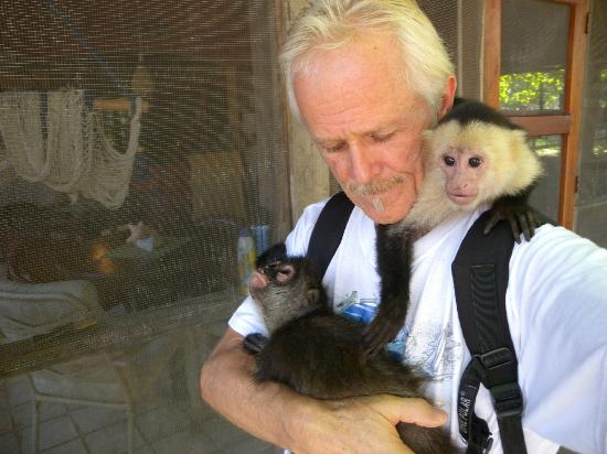 Tranquility Bay Beach Retreat: Cuddly time with the Loveable Monkeys