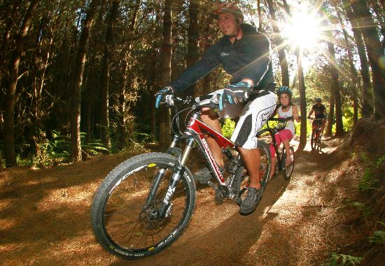 Mountain Bike Rotorua- Day Tours: Ride our beautiful forest on quality bikes