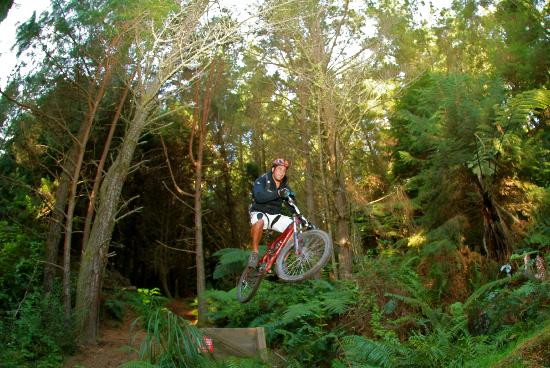 Mountain Bike Rotorua- Day Tours: Go big on some of the best trails in the world!