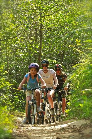 Mountain Bike Rotorua- Day Tours: Ride for 2 hours or 2 weeks.  There's so much to explore with over 140km of MTB options!