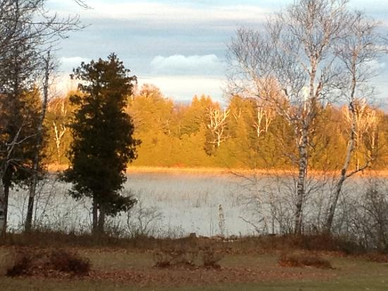 A nice fall view outside the Coyote Roadhouse !