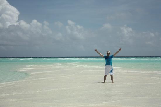 فندق ومنتجع تاج إكزوتيكا: desert island 