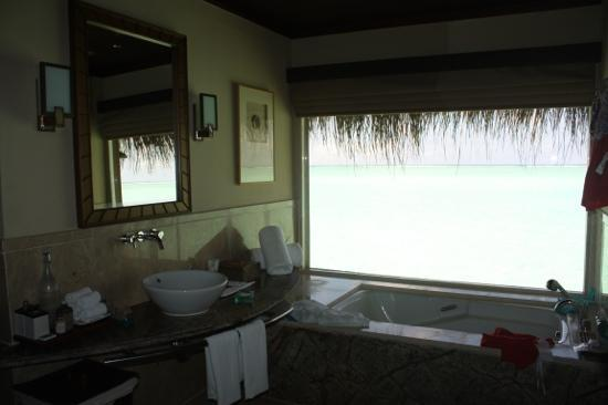 Taj Exotica Resort & Spa: amazing view from bathroom