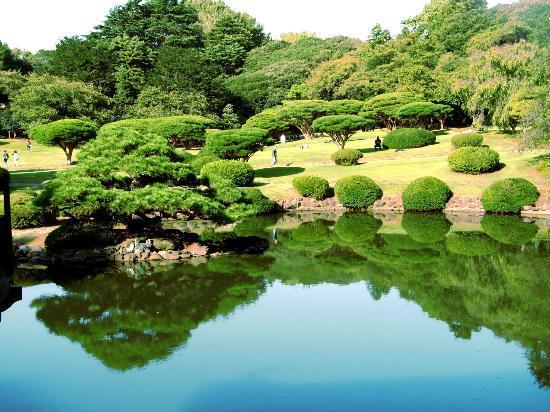 新宿御苑 - Picture of Shinjuku Gyoen National Garden, Shinjuku - TripAdvisor