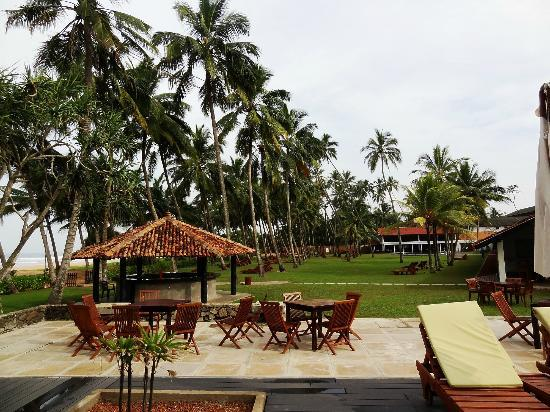 AVANI Bentota Resort & Spa: View of the lawns with the tiled breakfast area at the far end