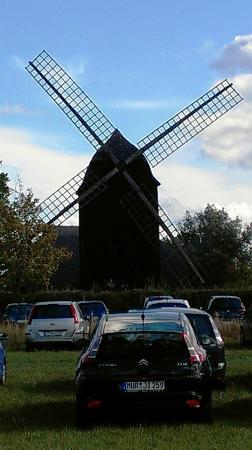 Freilichtmuseum Klockenhagen: Windmühle des Museum vom Parkplatz gesehen