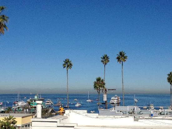 Catalina Island Seacrest Inn: The best view from the roof.