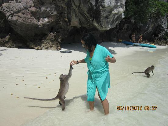 Phuket Sail Tours: Feeding the monkey