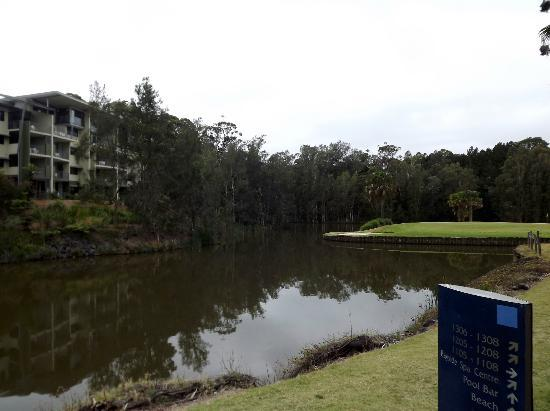 Novotel Coffs Harbour Pacific Bay Resort : area