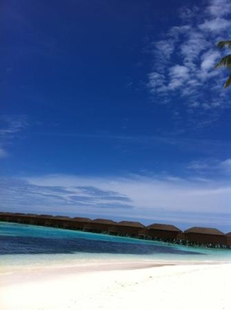 Meeru Island Resort & Spa: like a postcard ;)