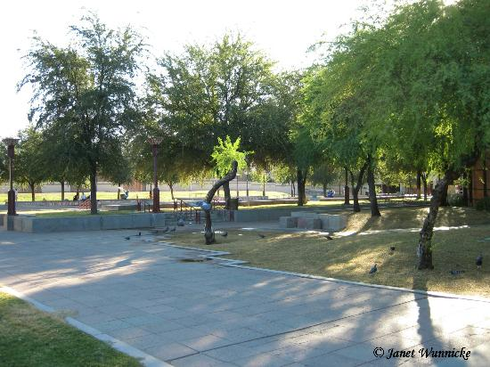 Margaret T. Hance Park: Looking southwest-in the park