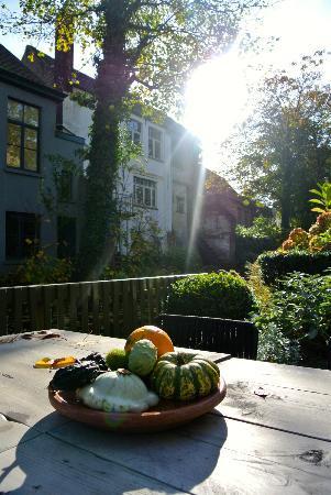 Huis Koning: waterside terrace