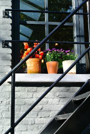 Huis Koning: terrace