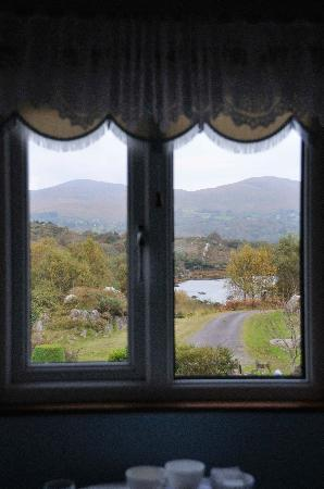 Beechwood House Bed & Breakfast: View from the beadroom