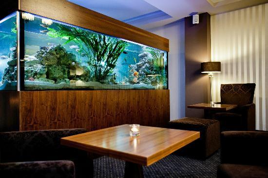 Golden Fish Hotel Apartments: Fishtank