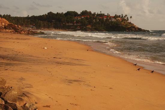 Golden Turtles Beach Resorts (Homestay): Beach close to the hotel